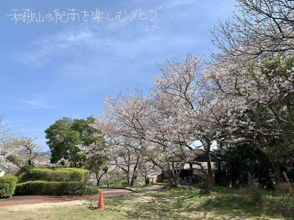 平草原 2020 春